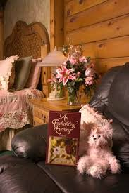 We have several romantic  hotel packages to choose from at our romantic inn.